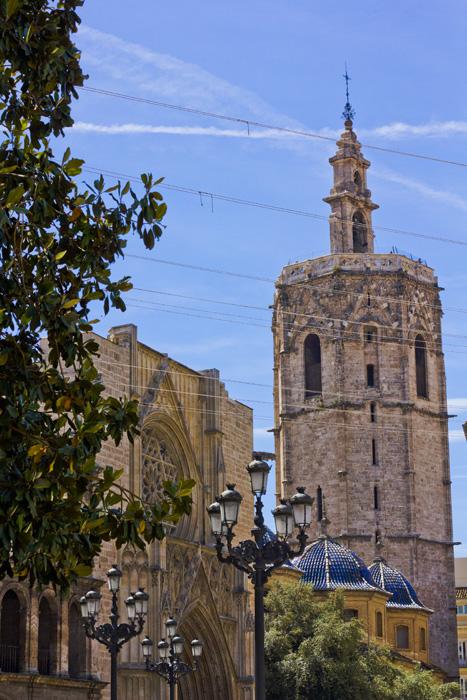 Orangenbaum und Kathedrale in Valencia