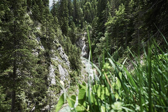Gras im Vordergrund und Wasserfall