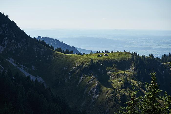 Bergblick mit Bauernhof und Schafen