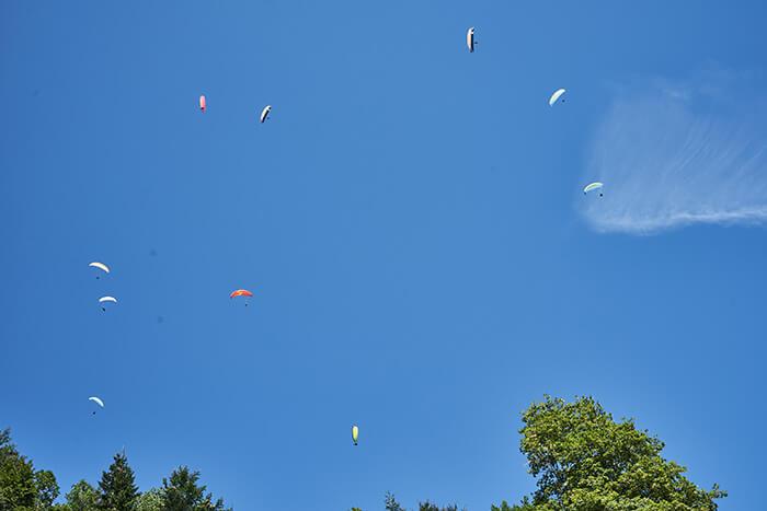 Gleitschirmflieger im Brauneck