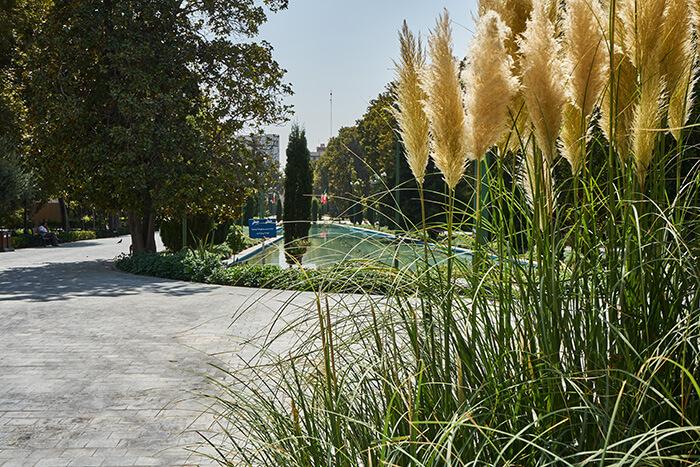 Park mit vielen Pflanzen im Iran Iran Reise-Erfahrungen Urlaub