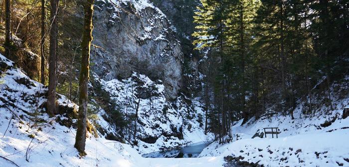 Teich im Winter Wanderung
