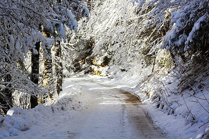 Wandern im Winter Wanderweg