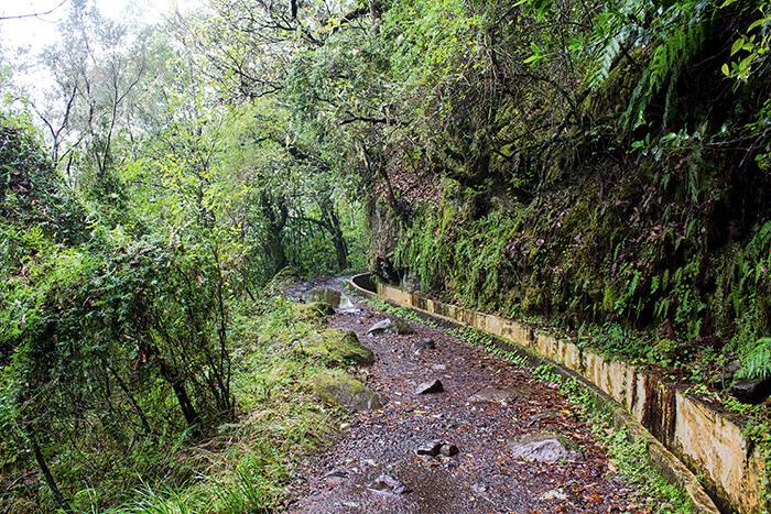 Madeira Sehenswürdigkeiten Levada Wanderung