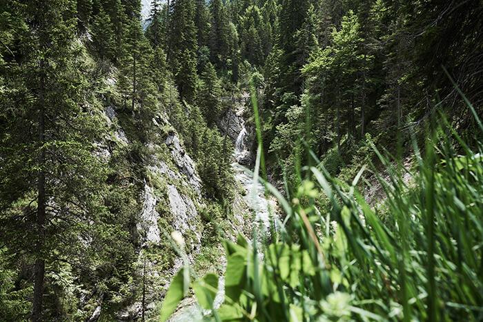 Wasserfall und Gras