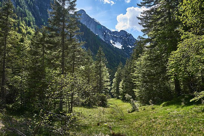 Wald und Berge Packliste Wandern