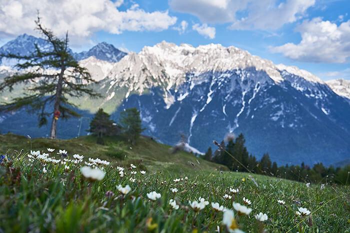 Packliste Tagestour Aussicht Berge