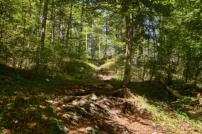 Wanderrouten für Anfänger