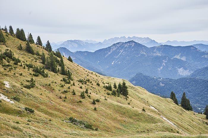 Herbstwanderung in Bayrischzell
