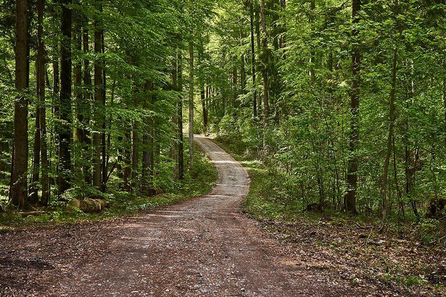 Bayerischer Wald Radweg