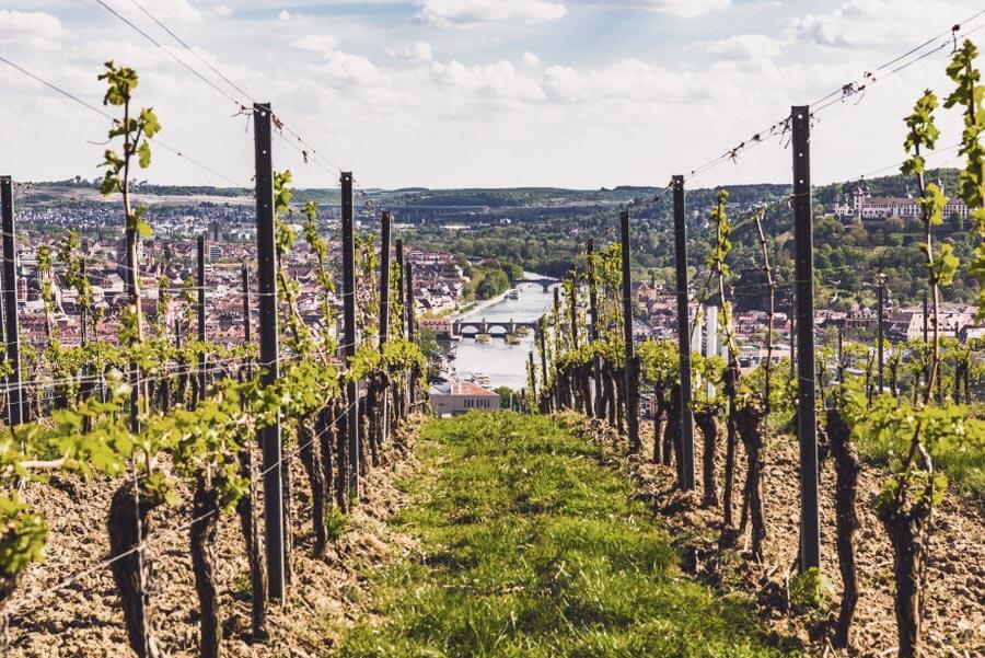 Wandern in Bayern: Stein Wein Pfad