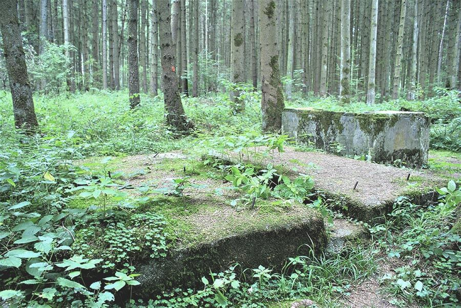 waldlager-horgau