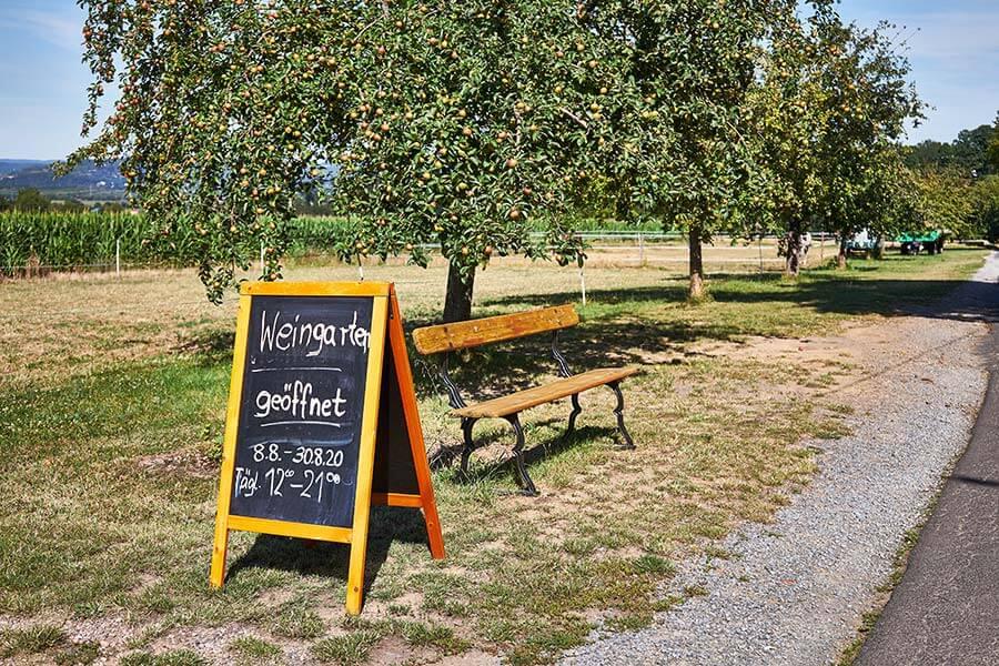 Weingarten schild mit obstbaum in churfranken