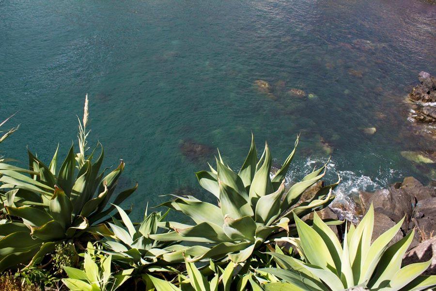 Meer auf Madeira