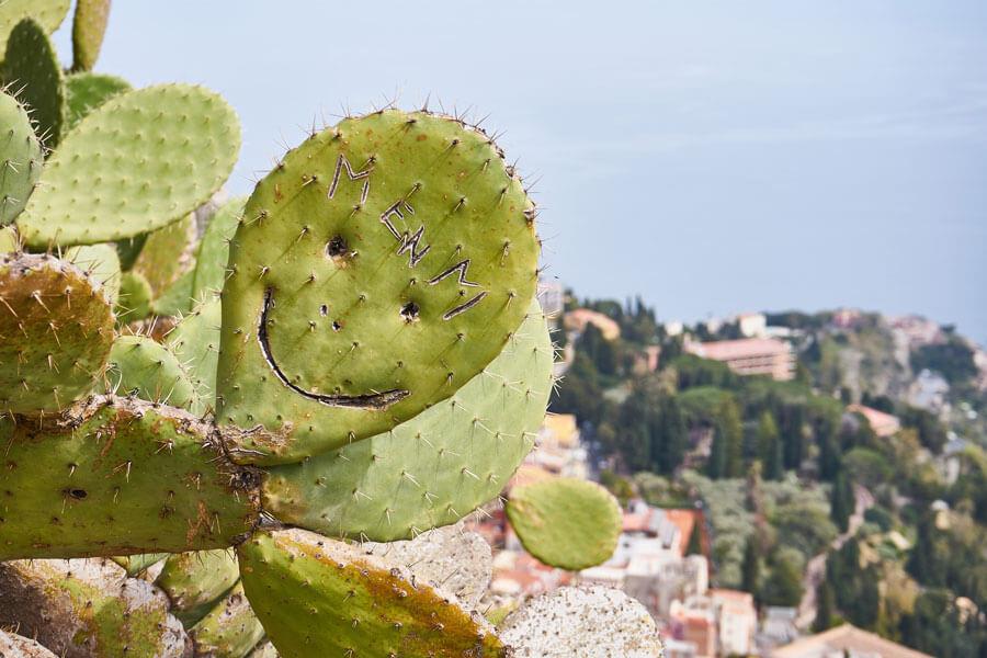 Kaktus mit lachendem Gesicht