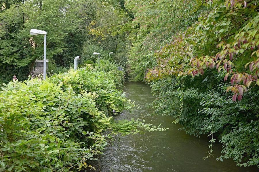 Grün in rosenheim