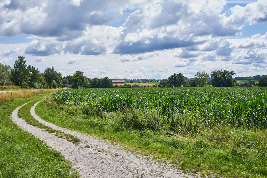 Feldweg zum Radfahren